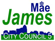 Charlotte City Council Campaign Sign With Skyline